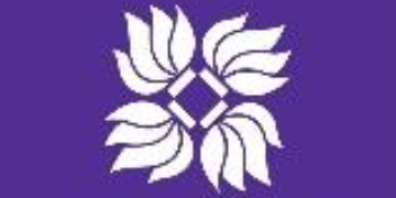 New York University, Shanghai logo